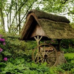 Koszty projektowania ogrodów